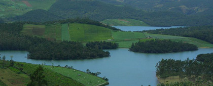 Famous Mysore Ooty and More Tour